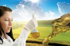Aceites de estampacion en frio de origen vegetal